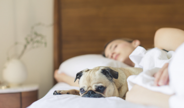 Hoeveel slaap heb je nou echt nodig?