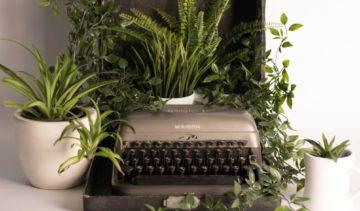 Plantjes stekken, een mindful hobby