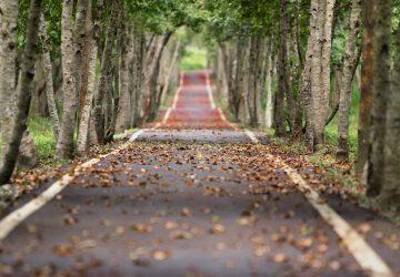 Jouw doelen en focus voor herstel