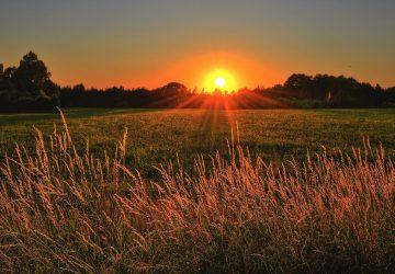 zonsondergang-natuur-online-psycholoog