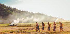 mensen-plantage-erbij-horen