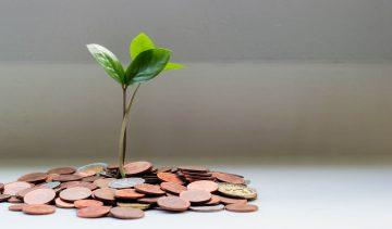 NiceDay blog: money and happiness