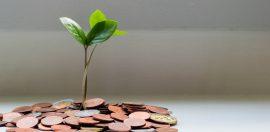 NiceDay blog: Geld en geluk