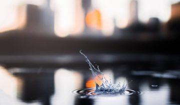NiceDay blog: Antidepressiva: een kleine pil met een grote impact