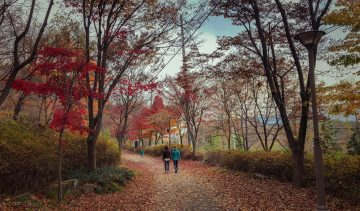 vrouwen-lopen-natuur-ontspannen