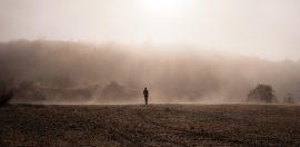 NiceDay blog: een blik op antidepressiva - airam